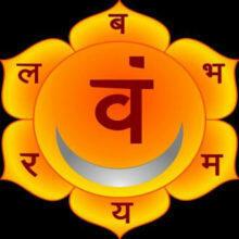 1e-Chakra-Svadhisthana