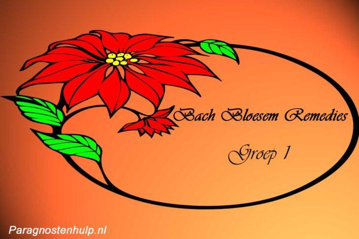 Bach Remedies Groep 1