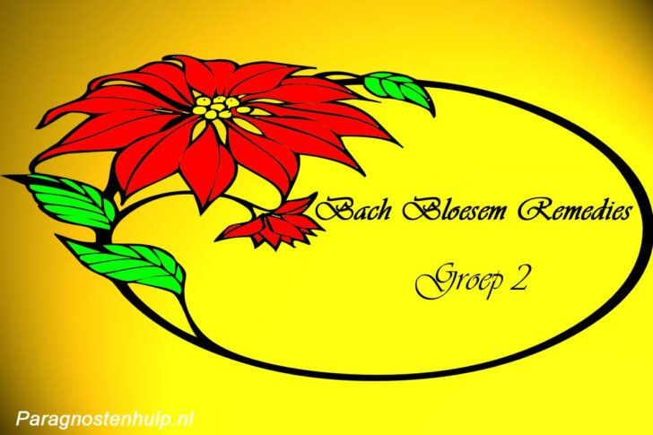 Bach Remedies Groep 2