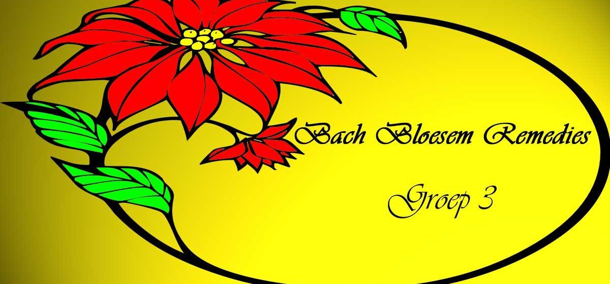 Bach Remedies Groep 3