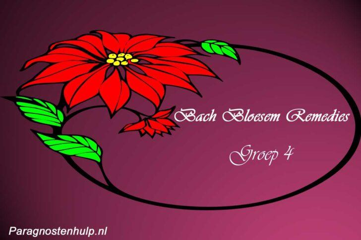 Bach Bloesem Remedies Groep 4