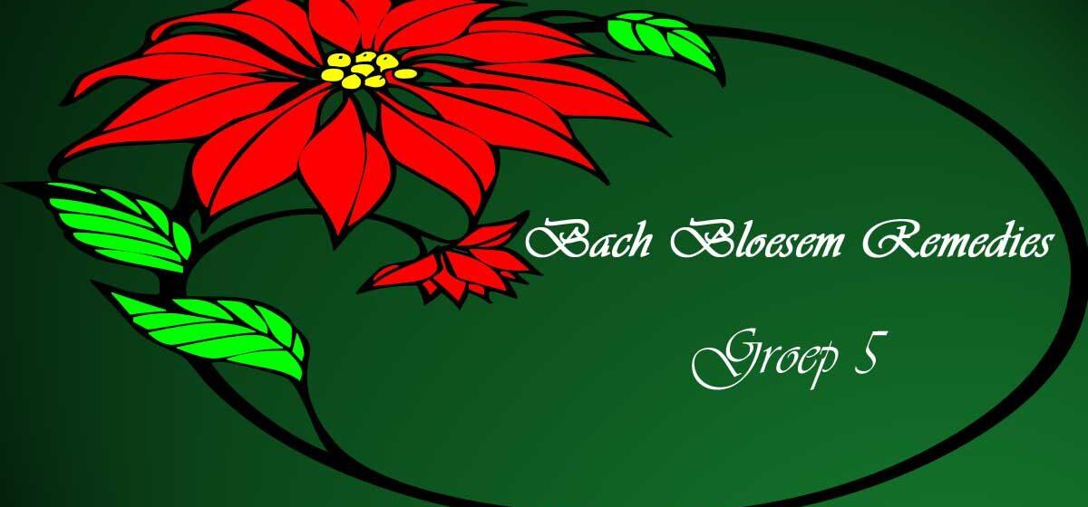 BHachbloesem Remedies groep 5