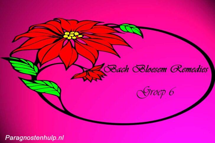 Bachbloesem Remedies Groep 6